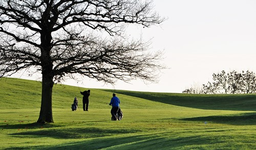 17th in play